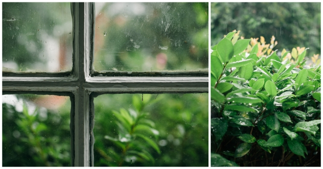 RainlySunday_Diptych